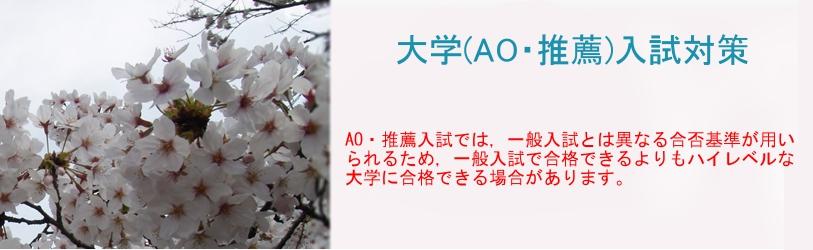 ao_main[1]
